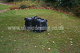 Making leaf mould (15)
