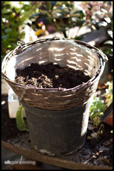 Half fill the basket with compost, but don't bother with water retaining gel.